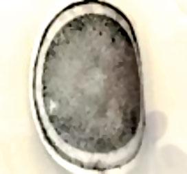 Al Mudaibegh Fig 14